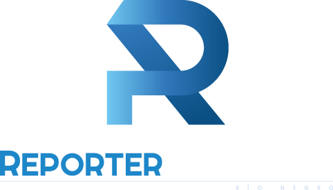 logo vertical reporter patagonia